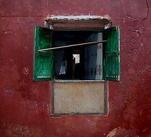 Windows Around The World 3 by Roddy Fitzgerald
