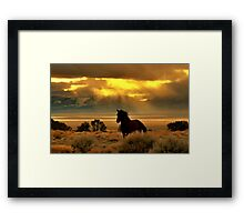 High Desert Gold Framed Print