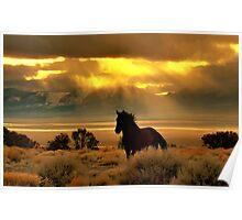 High Desert Gold Poster