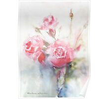 soft pink roses dreaming away Poster