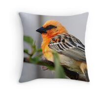 Seychelles - Madagascar  Fody Throw Pillow