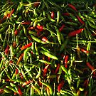 SPICY CHILIES by DAdeSimone