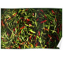 SPICY CHILIES Poster