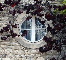 Windows Around The World 4 by Roddy Fitzgerald