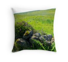 Roadside Rockery, Longmore, Broughshane, County Antrim Throw Pillow