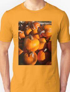 Pile of traditional pumpkins Unisex T-Shirt