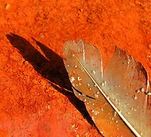 Oxidised Feather - Seaside by Honor Kyne