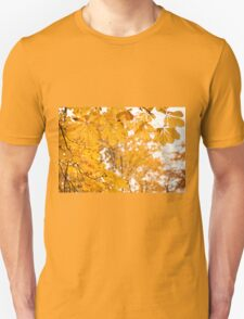 chestnut autumn yellow leaves T-Shirt