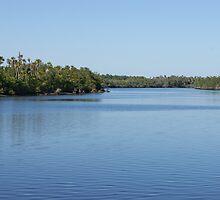 Solitude - Port St Lucie River by artbasik