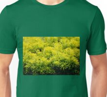 Taxus baccata Yew new shoots Unisex T-Shirt