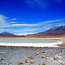 Volcanic Salar Lakes and Landscape by Honor Kyne