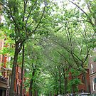 Brooklyn Heights by Alberto  DeJesus
