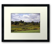 Meadow at Greenbank Observatory Framed Print