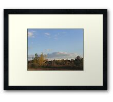 White Marsh Gold Framed Print