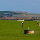Northampton Farmlands 2 by Adrian Lord