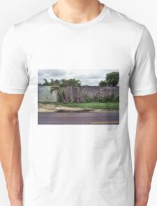 A Group of Palms by the Wall with White Gate T-Shirt