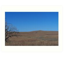 Tall Grass Prairie, Flint Hills KS Art Print