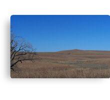 Tall Grass Prairie, Flint Hills KS Canvas Print
