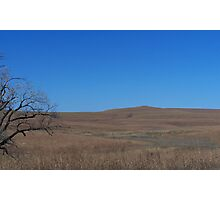 Tall Grass Prairie, Flint Hills KS Photographic Print