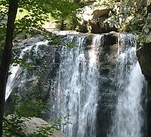 Kilgore Falls, Harford County MD by Lucy Albert