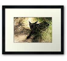 """""""Hello There"""" Framed Print"""