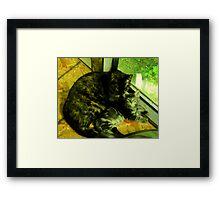 Cousin Opal cares for little Bandit Bear Framed Print