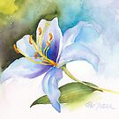 White Lily Study by Pat Yager