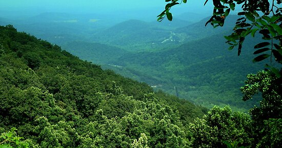 BLUE Ridge HILLSIDE ^ by ctheworld