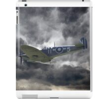 Sea Stormbird iPad Case/Skin