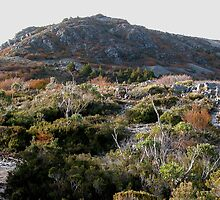 Mount Campbell,Cradle Mountain,Tasmania,Australia. by kaysharp