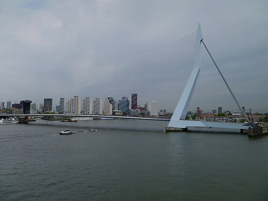 Erasmus Bridge by Lucinda Walter