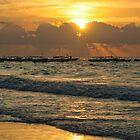 Morning Light by Lynne Morris
