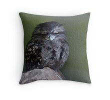 Tawny Frogmouth, Adelaide Zoo Throw Pillow