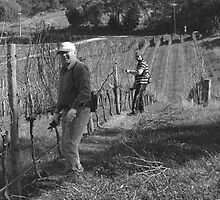 Pruners, Carey Gully, Adelaide Hills by Adam Jan Dutkiewicz
