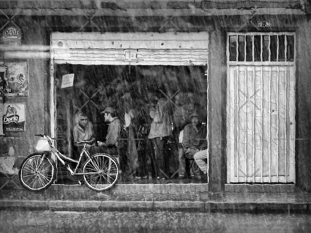 It's Raining Cats and Dogs Outside!!! by Maria  Gonzalez