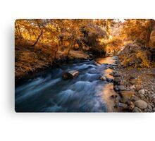 Autumn in Ihlara Valley Canvas Print