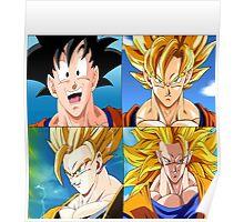 Goku Evolution - Dragon Ball Poster
