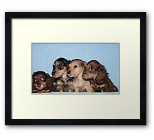 Which Way? Framed Print