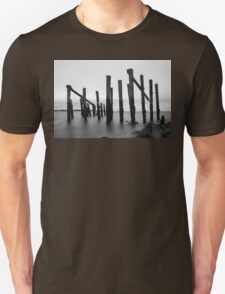 Old posts T-Shirt