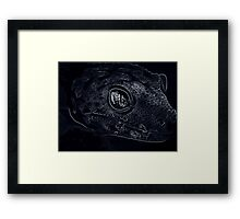Reptile Smiles Framed Print