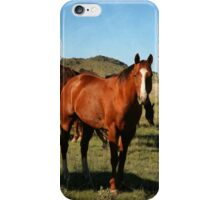 Horse Portrait iPhone Case/Skin
