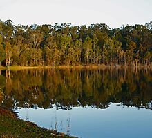 Reflections at Lake Samsonvale by Sea-Change