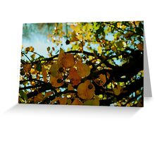 Abstract branches and leaves Greeting Card