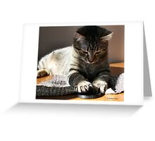 Love Affair With The Lens Greeting Card