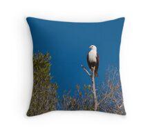 Brahminy Kite Throw Pillow