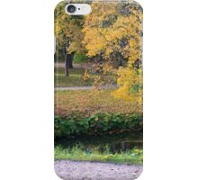 Autumn in the park iPhone Case/Skin