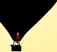 Hot air balloon at sunset by Mihaela Limberea