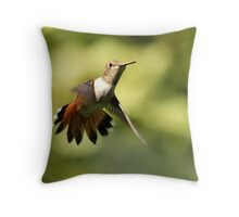A Hovering Surprise Throw Pillow