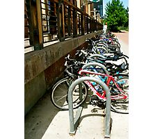 Bicycles Corraled Photographic Print