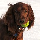 Keep your eye on the ball by dianadudley